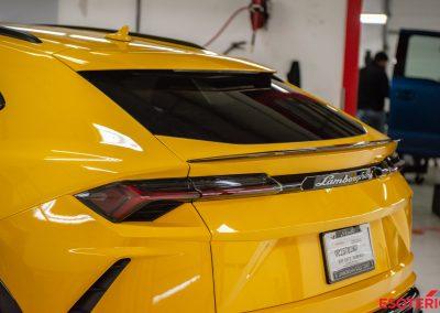 Lamborghini Urus Window Tint