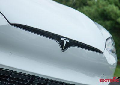 Tesla Plaid Model S Esoteric Detail
